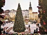 Christmas tree in Ostrava, Czech Republik
