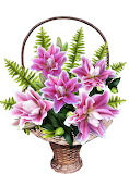 Basket lilly