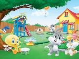 Tweety-Bird-Baby-days-Looney-Tunes-cartoon-image-Desktop-Wallpap
