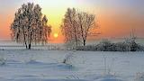 Siberian Winter Sunset