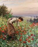 Picking Wildflowers~ Daniel Ridgeway Knight