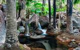Julie Fletcher Photography 'Zebedee Hot Springs'