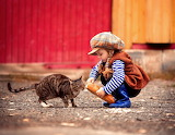 Feeding A Cat