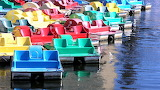 Rainbow of Paddleboats