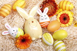 Holidays Easter Rabbits