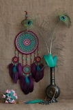 peacock =feathers dreamcatcher