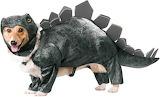 Stegosaurus-dog