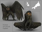 Owlman of Cornwall, England