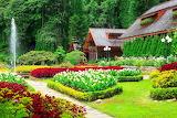 ☺♥ Pretty gardens...