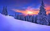 Winter Landscape VI