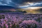 Moors-scotland.ngsversion.1515433750739.adapt.1900.1