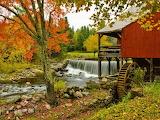 Autumn mill beautiful foliage grass colors
