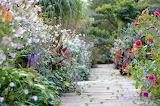 A Flowery Path