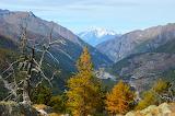 Gran Paradiso Italy - Photo id-2854650 Pixabay by Gernot Reipen