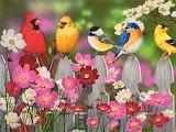 ☺ Spring...