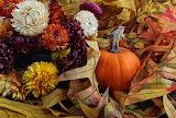 ^ Fall beauty