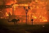 Australian Bush Fires 2020