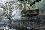 "Architecture archdaily Treewow-O ""Tree House w:Curved Roof"" MONO"