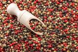 Pebre - Pepper