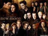 New-Moon-1600x1200-twilight-series-8686693-1600-1200