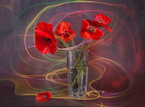 Vase, flowers, poppies, abstract background