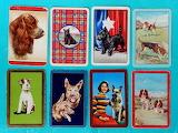 Swap Cards dogs 8