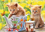 Tea-time-kittens