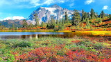 Mountain, pond, woods, trees, vegetation, autumn, nature