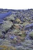 Lava field in Iceland
