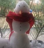 Houston Snowman