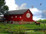 All american farm