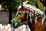 ^ Christmas parade