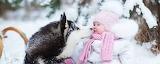 Собака, ребенок, снег