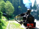 Steam Powered Train in the Maramures Romania
