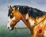 Buckskin native american war horse crista forest