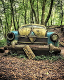 Two toned car in woods