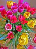Tulip Flower Arrangement...