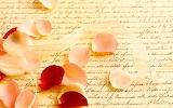 Lletres - Letters