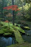 "Landscape tumblr dogstardreaming ""Moss Bridge, Kyoto, Japan"""