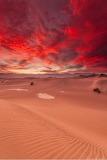Désert de Mesquite sous ciel de feu