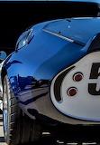 Daytona_Cobra015_Back