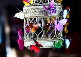 ButterflyFlyAway_KrantiBasak