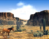 Wild-West-Screen-Saver 1