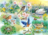 Feathered-friends-house-of-puzzles-jigsaw-big-250-gMTNSNYl5RBa2j