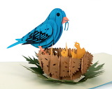 ^ Blue Bird - intricate greeting card