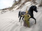 dune guardian