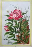 Botanique (5)