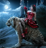 Riding the tiger