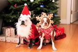 #Santa and His Elf