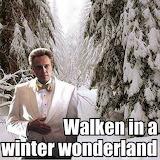 Christopher Walken Wonderland